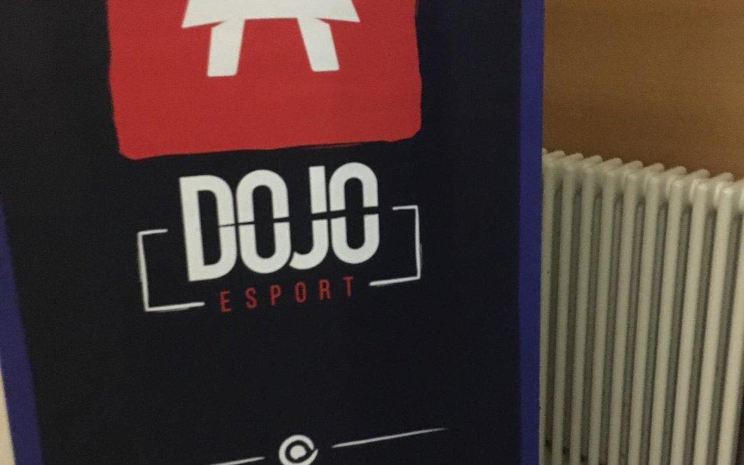 Le Dojo Esport : un événement international